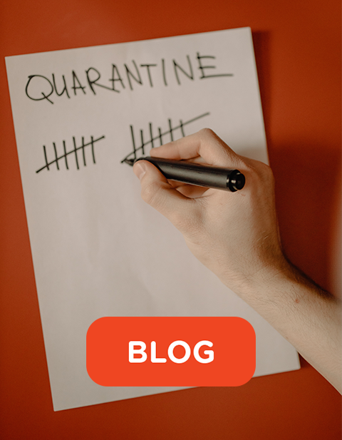 Blog 480x618 teaminsights