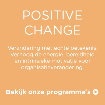 Vds training consultants positive change8