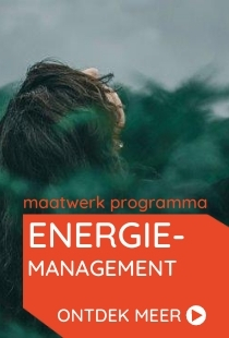 Vds training consultants maatwerk training energiemanagement